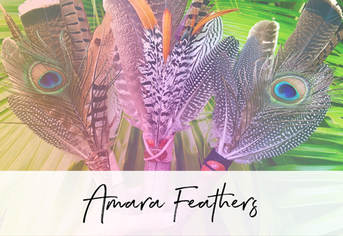 amara-feathers-button