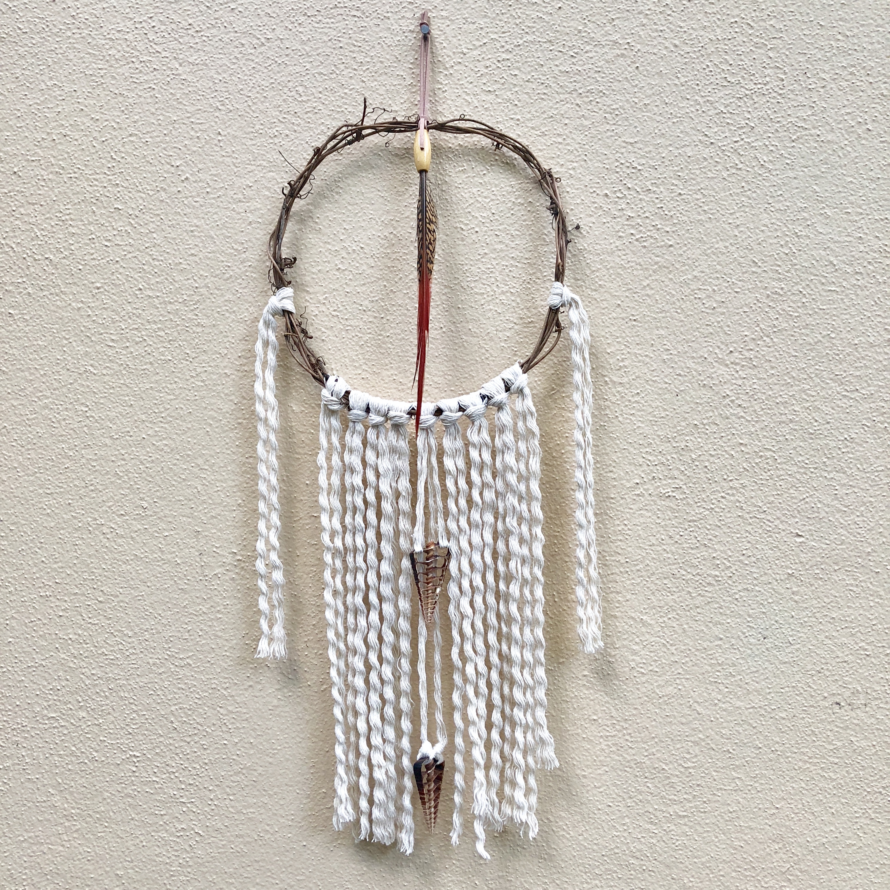 Red Tip Pheasant Feather wall Hanging